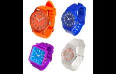 projet erp saas horlogerie, référence erp saas secteur montres